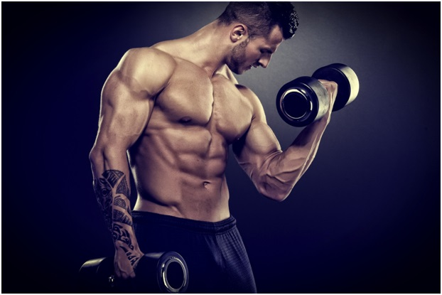 muscular strenght.jpg